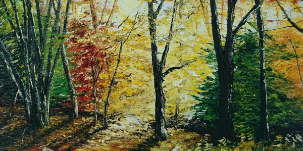 Autumn Light, Killarney The Demesne 40x51cm