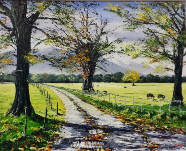 "Kerry Cows, the Demesne in Autumn, 16x20"" €420"