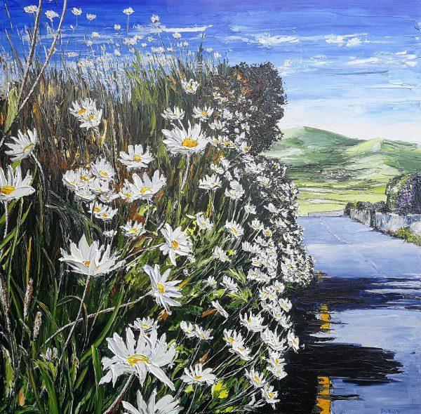 Dingle Daisies 90x90cm box canvas