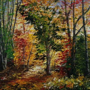 Autumn Light Ross Island 40x50cm
