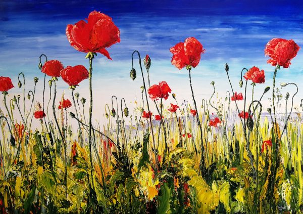 Poppies on the Terraces (2)